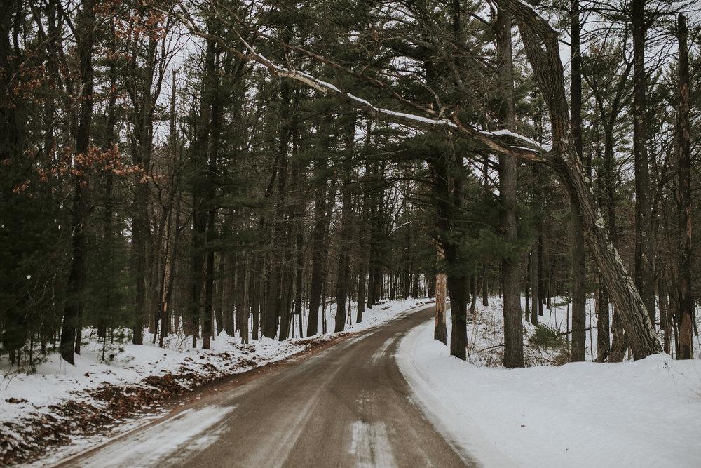 Whispering Pines Road.jpg