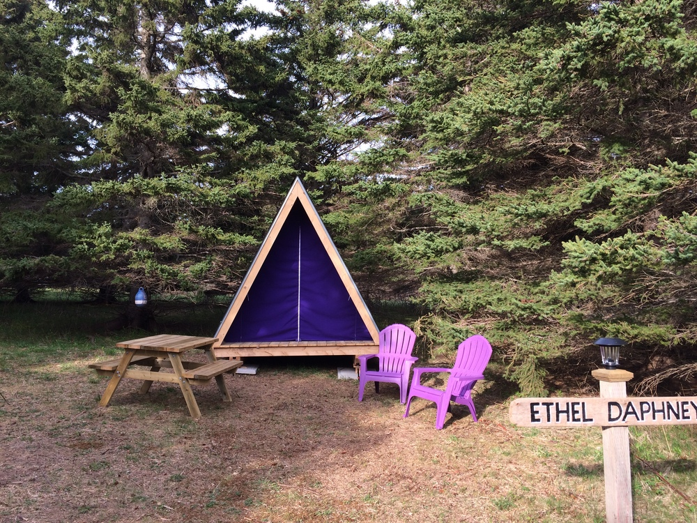 Guests are encouraged to bring a sleeping bag and pillow but bedding is available for $10 per person per night. & Included u2014 Pictou island wooden tents