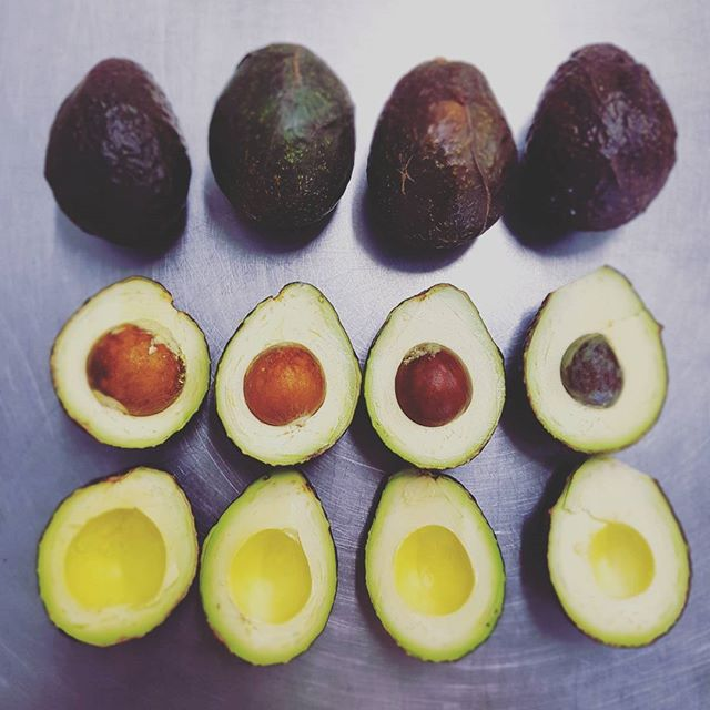 AvoDiversity! All shape & colors!  Ripe & Ready 💚 🍦  Order for Mother's day a box of healthy truffles!  #avolifestyle #avocadodessert #avocado #aguacate #avocat #montreal #foodart #foodprep #tiramisu #truffles #vegan #natural #healthyfat #avoperfection #green #healthy #earthbutter #mothersday #ingredients #quality