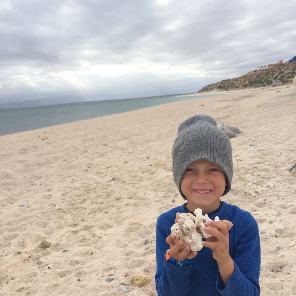 Finding treasures on the beach in Baja.