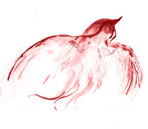 - Red Bird South, summer, fire, knowlege.  Only appears in times of good fortune.