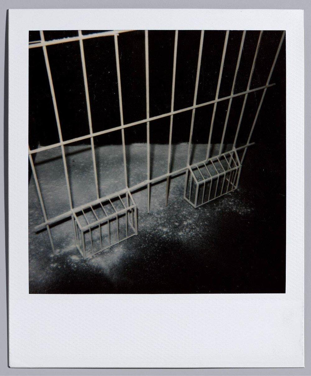 #1 Luc Tuymans,Within - 2015 -27 x 21 CM De donkerste spoken uit de Europese geschiedenis zet hij sober op doek, Luc Tuymans, de trefzekere chroniqueur der menselijke wreedheden. Speciaal voor Oogst diept deze grootmeester van de schilderkunst een polaroidfoto op uit zijn archief, één die een inkijk biedt in zijn werkproces én een autonoom kunstwerk is.