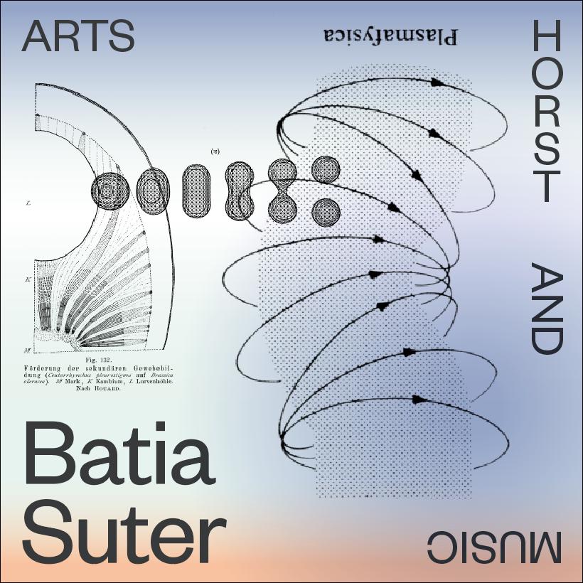 Een bewerking van Batia's beeld voor HORST door de grafische studio Ronny & Johny