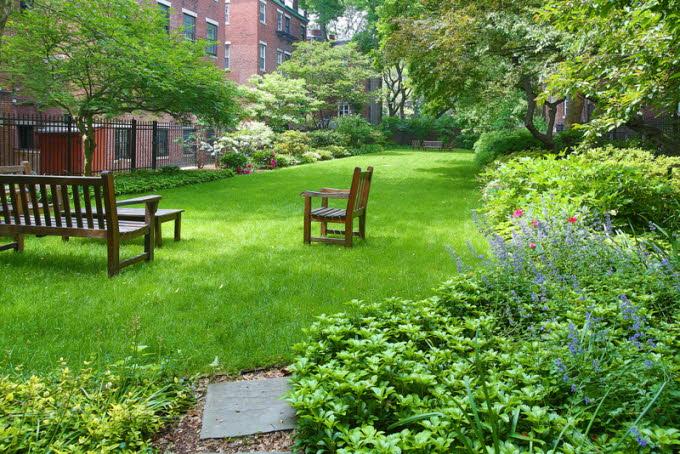 db_7_West-Hill-Place__Yard-Photo_800-M1.jpg