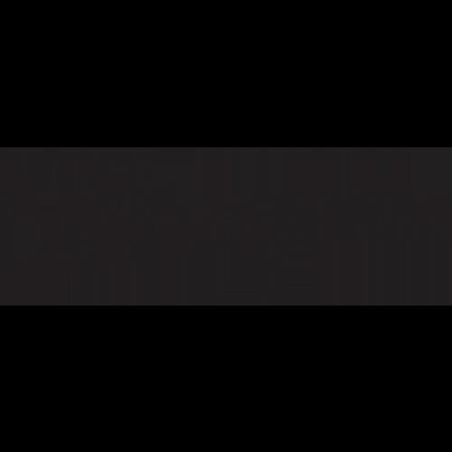 Pangea Store