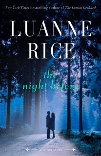 luanne-rice-the-night-before.jpg