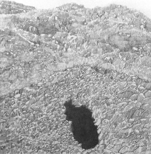Hand Dug Mineshaft II