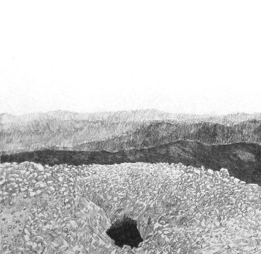 Hand Dug Mineshaft III