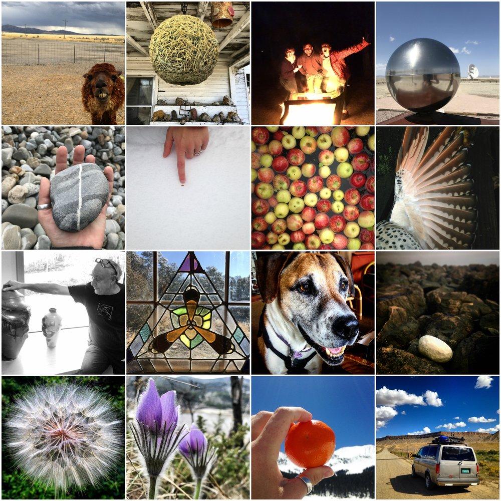 Solsalgic archive Collage.jpg