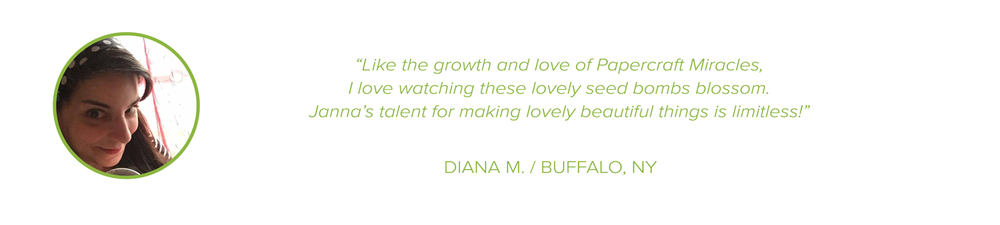 TESTIMONIAL-DIANA2-WITH-QUOTE.jpg