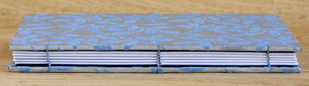 silver-and-blue-full-spine.jpg