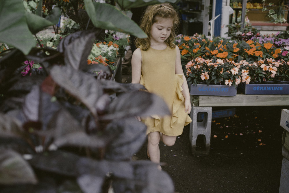 Saturdays at the Market - The End of Summer Editorial