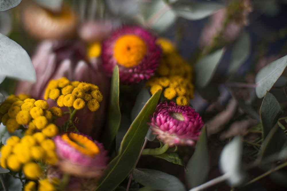 A freelensed bunch of native flowers captured by Sydney photographer, Cindy Cavanagh