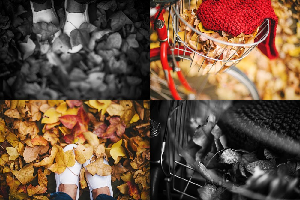 A collage of images celebrating the texture and colours of autumn in Sydney