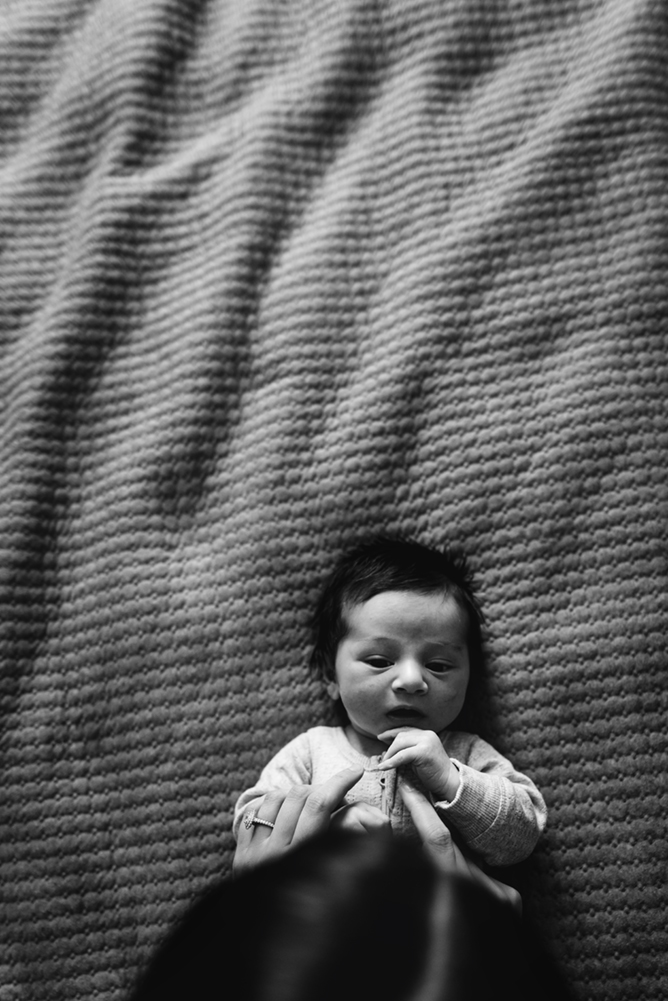 cindycavanagh-newborn-photos-in-sydney (37 of 58).jpg
