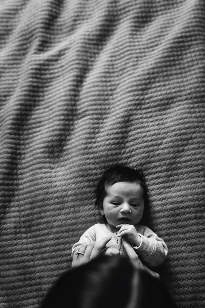 cindycavanagh-newborn-photos-in-sydney (37 of 58).jpg