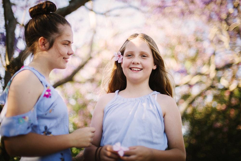 jacaranda blossoms in Sydney