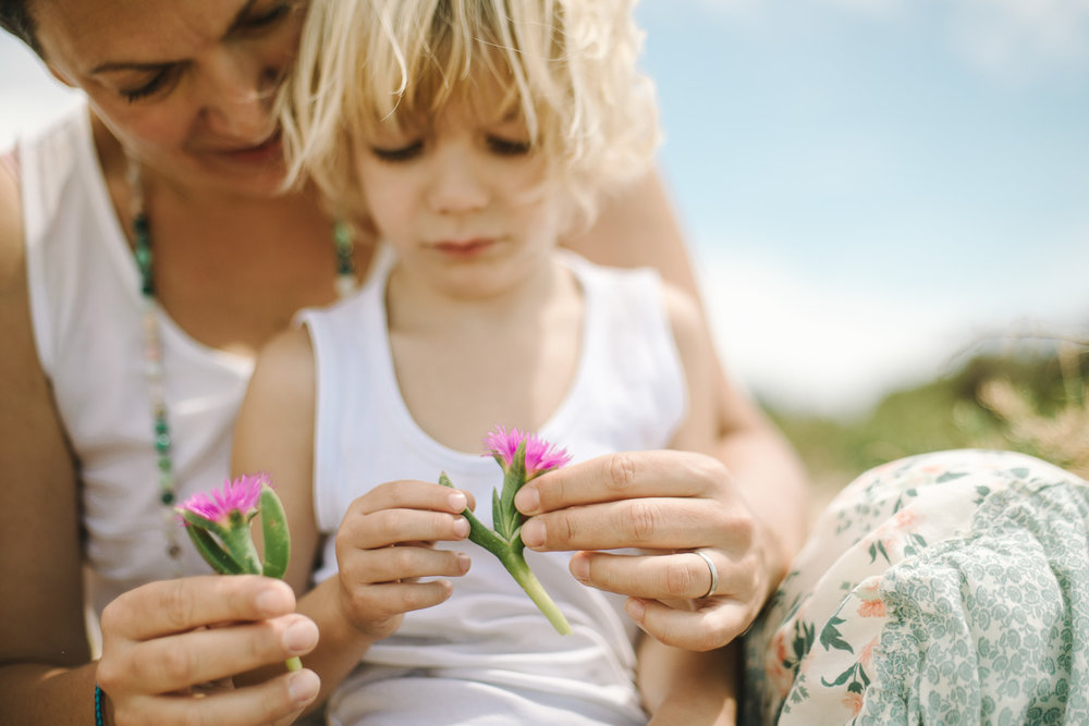 A Mum and her son admire two purple flowers they picked as the walked on the beach in Sydney during a family portrait session on the Northern beaches.