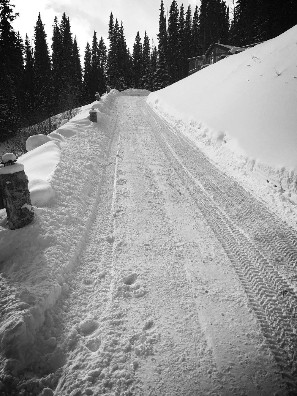 Driveway-3.JPG