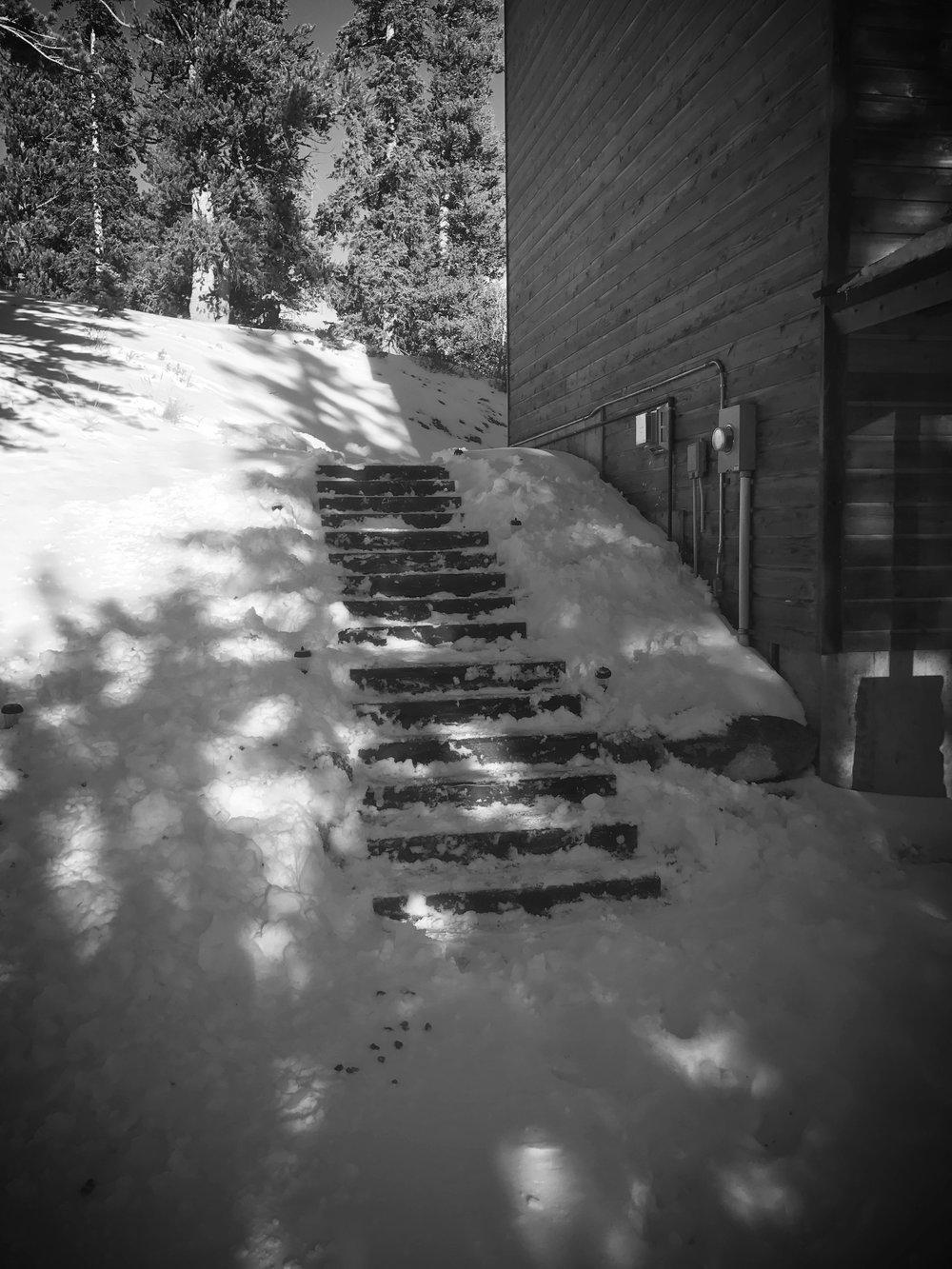 Path-2.JPG