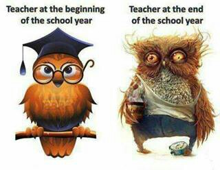 teacher-frazzled