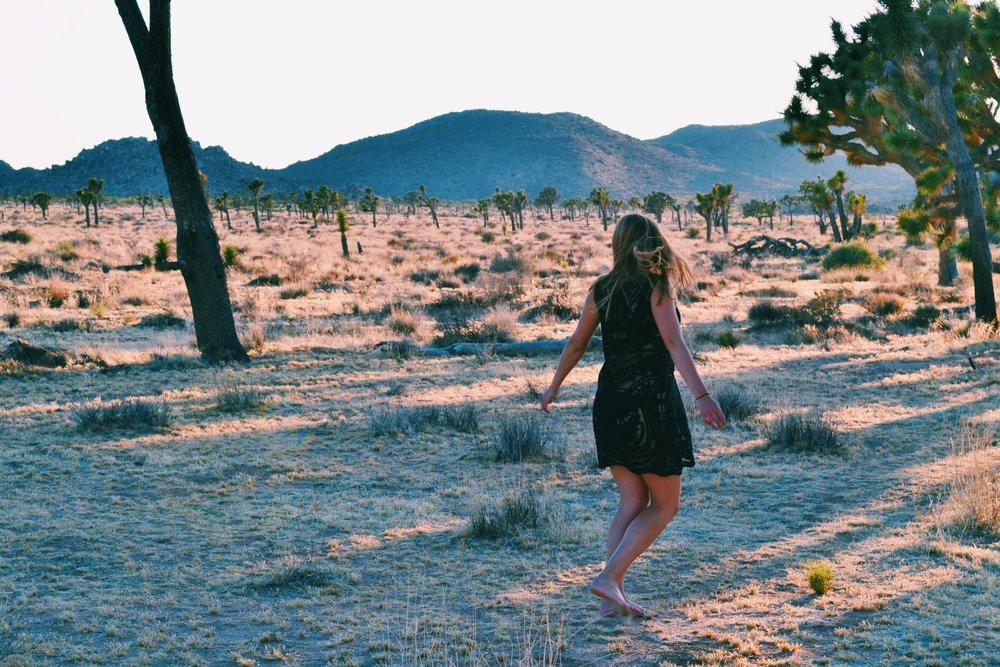 desert-golden-hour