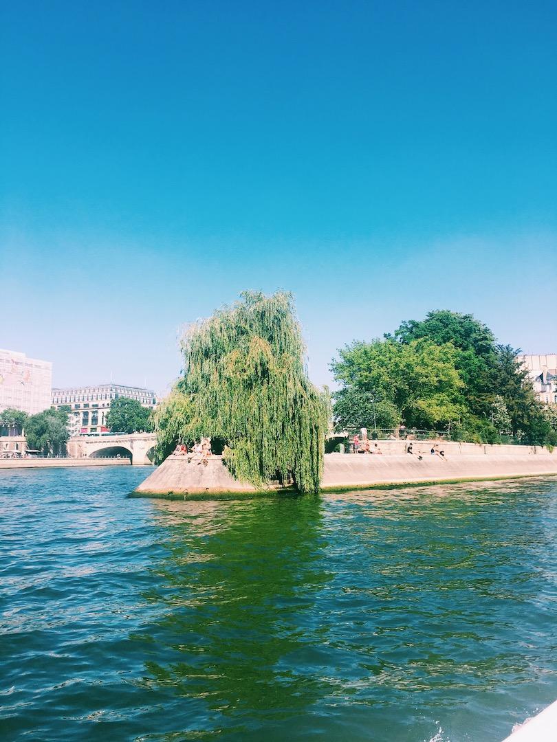 sun-bathing-paris-france.JPG