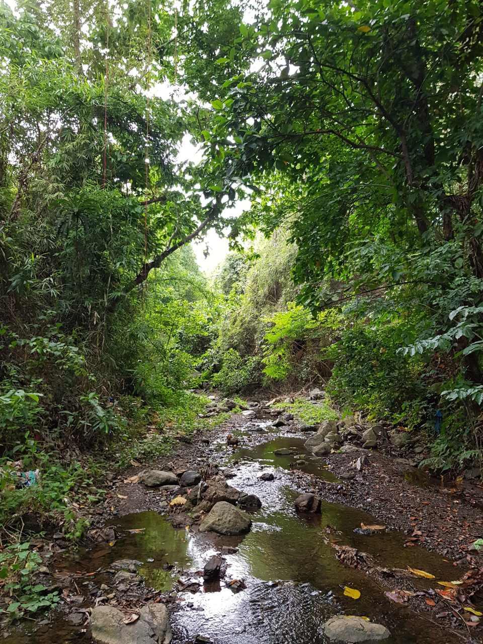River-02-PhotographerName.JPG