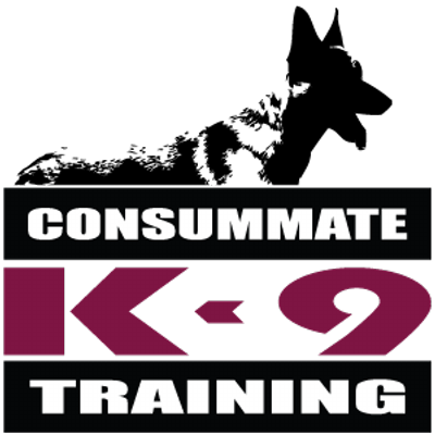 Consummate K-9 Training