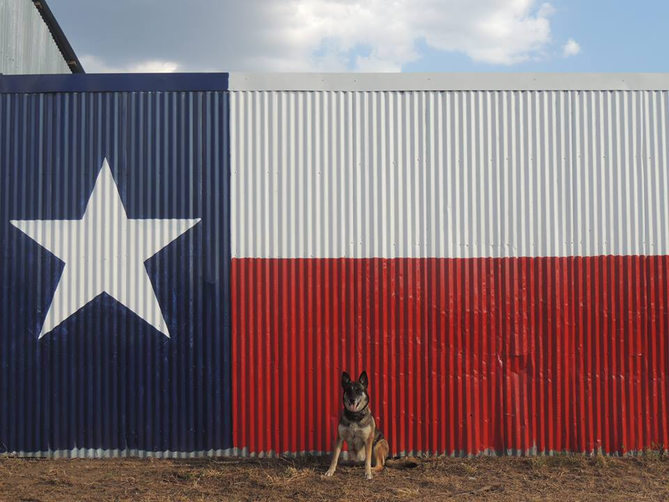 *LANDMARKER*  YOU CANNOT MISS THE BARN WITH THE GIANT TEXAS FLAG PAINTED ON IT!