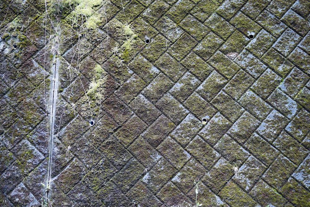 A mossy wall somewhere near Okabe Tamatori (Shizuoka Prefecture)