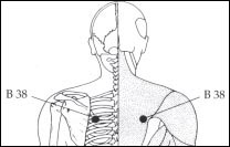 Location : Between the shoulder blade and the spine at the level of the heart.   Benefits : Relieves coughing, breathing difficulties, and respiratory problems. This calming point also helps balance the emotions.