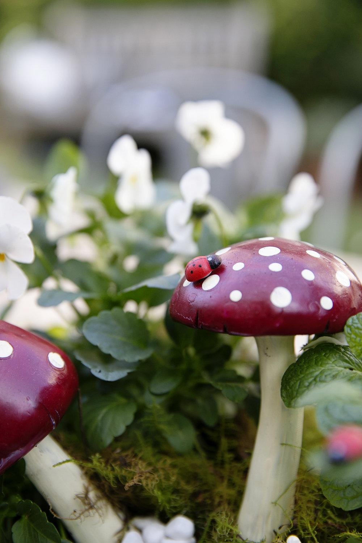 Fairy Garden 030.JPG