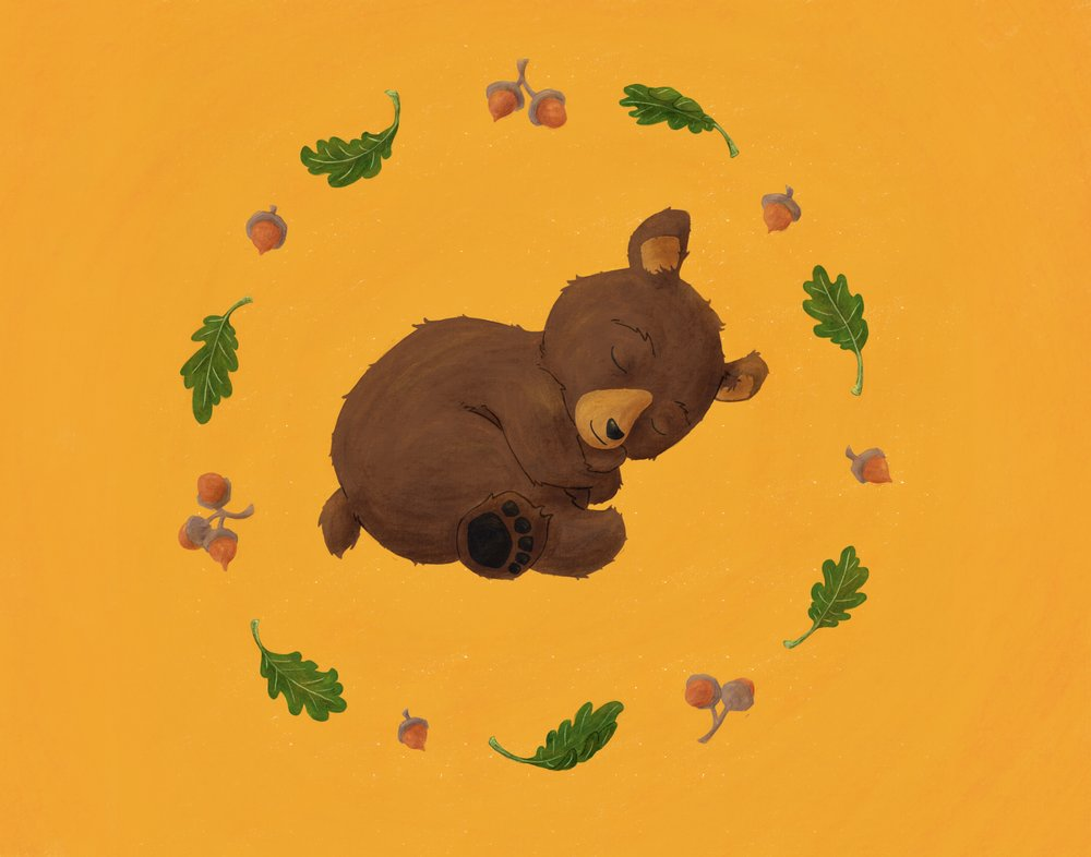 Baby Bear (2018) 15x15 Inches