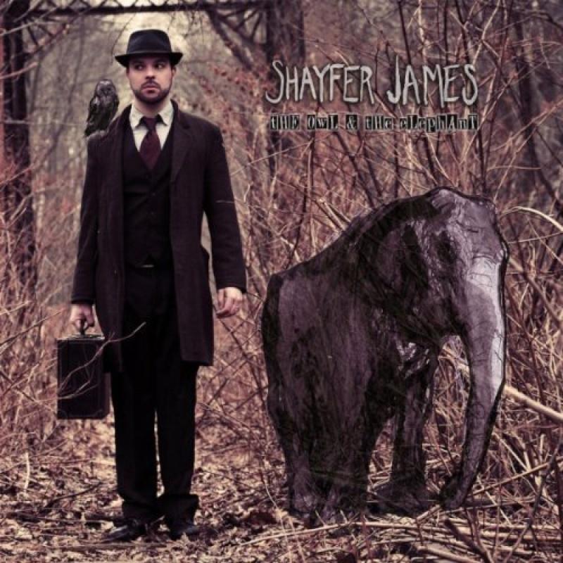 Shayfer James - The Owl and The Elephant.jpg