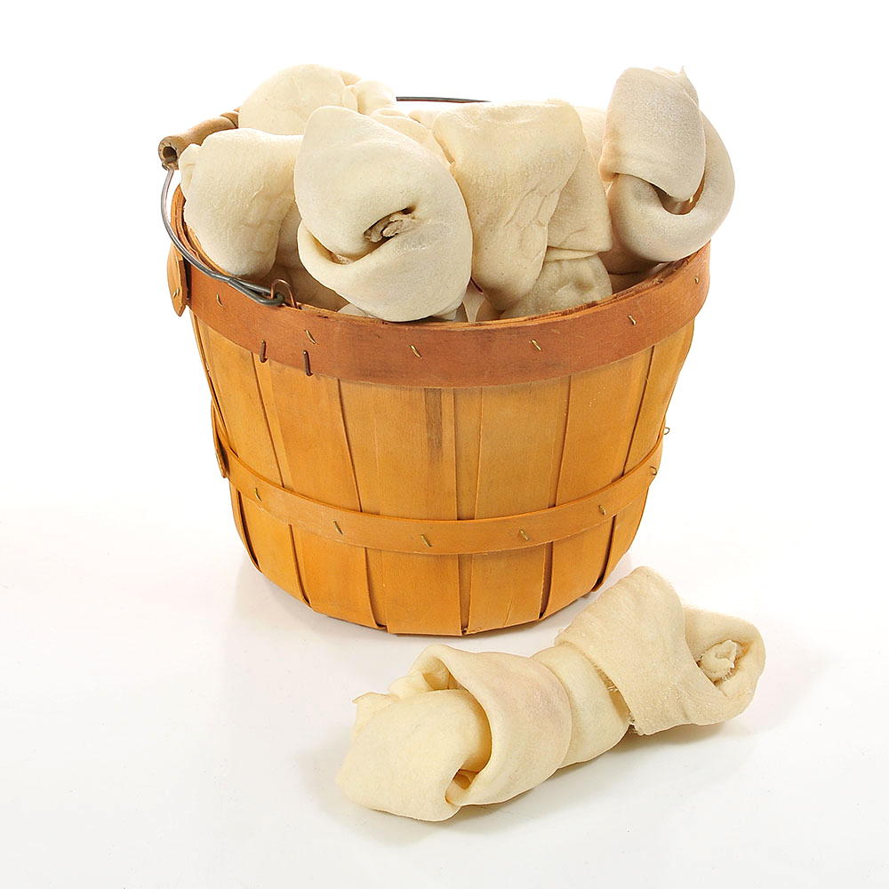 FREE home delivery of your dog's favorites! Food,treats &toys... even beds and leashes!