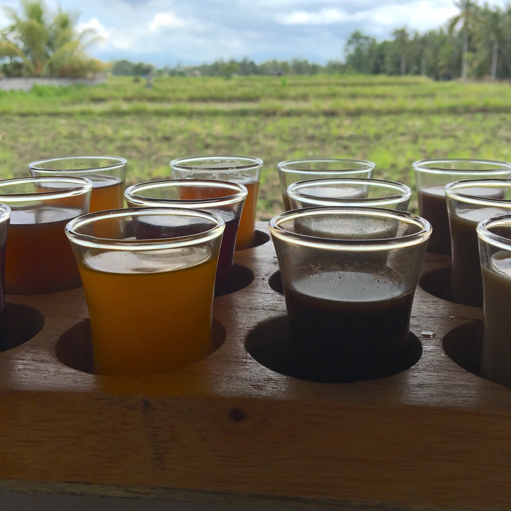 Samples of teas and coffees made with the spices grown in the plantation. They bring you a tray that looks like an alchemist's ingredients and you sample shots of ginger tea, turmeric tea, lemongrass tea, Balinese vanilla coffee, ginger coffee, Balinese mocha and other curiosities.