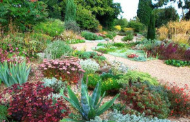 Beth Chatto Gardens - Inspirational and world-famous plantsman's garden created by Beth Chatto.click here for more informationCO7 7DB