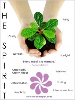 The Spirit Aspect
