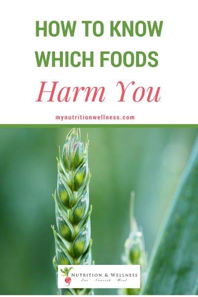 It's a known fact among  nutritionists and functional medicine practitioners that the foods you consume on a daily basis can have a far reaching effect on your health