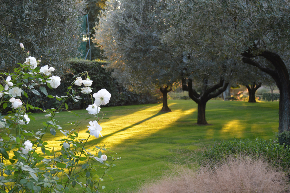 05-Parco-privato-Roma-Studio-Architetto-del-paesaggio-Green-Atelier-Roma.jpg