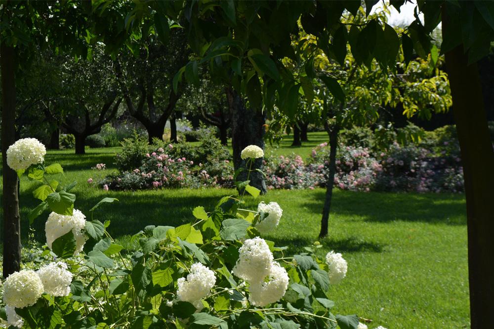14-Parco-privato-Roma-Studio-Architetto-del-paesaggio-Green-Atelier-Roma.jpg