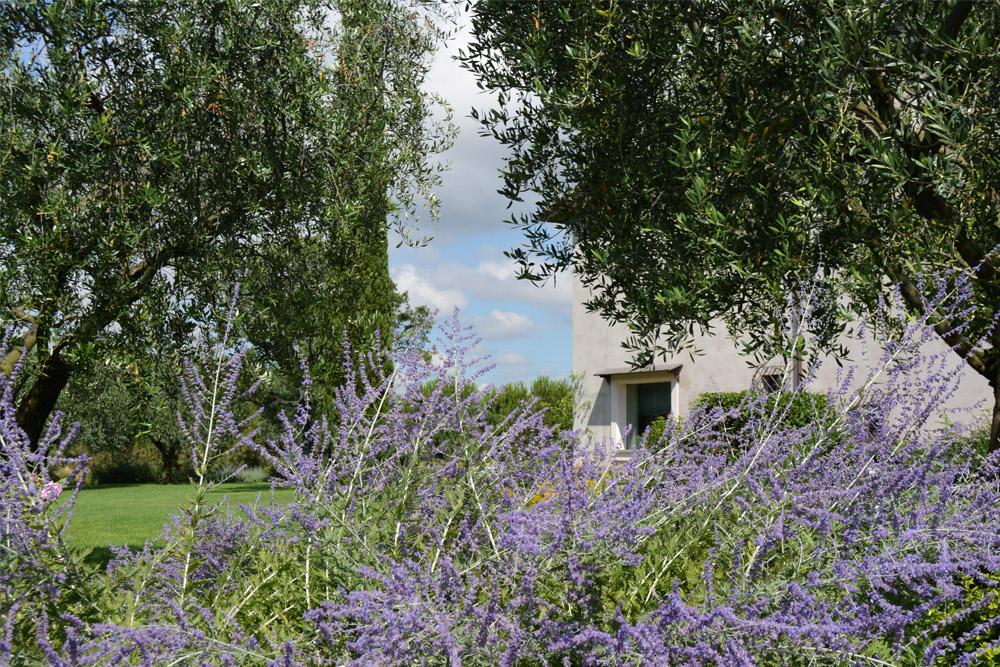 16-Parco-privato-Roma-Studio-Architetto-del-paesaggio-Green-Atelier-Roma.jpg