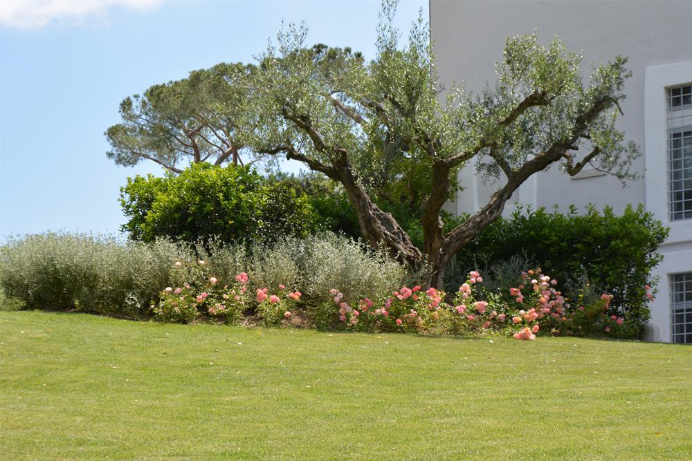 10-Tenuta-privata-Roma-Studio-Architetti-del-verde-Green-Atelier-Roma.jpg