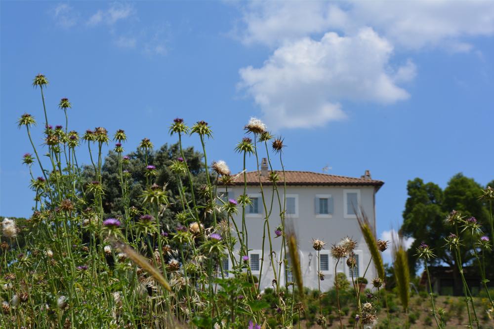 15-Tenuta-privata-Roma-Studio-Architetti-del-verde-Green-Atelier-Roma.jpg