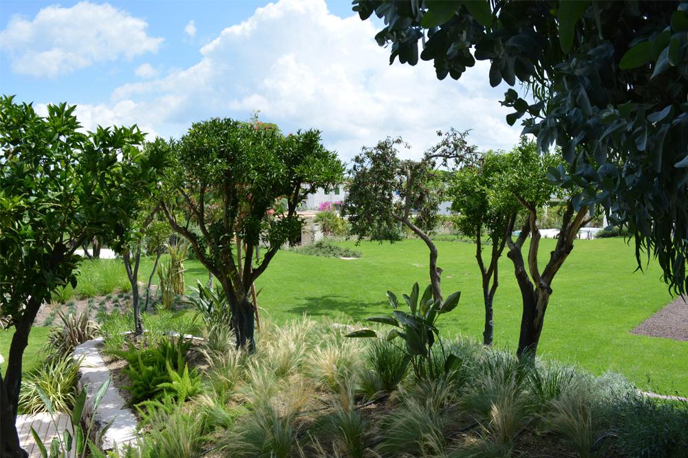 10-Parco-termale-privato-Ischia-Napoli-Studio-Architetti-del-verde-Green-Atelier-Roma.jpg