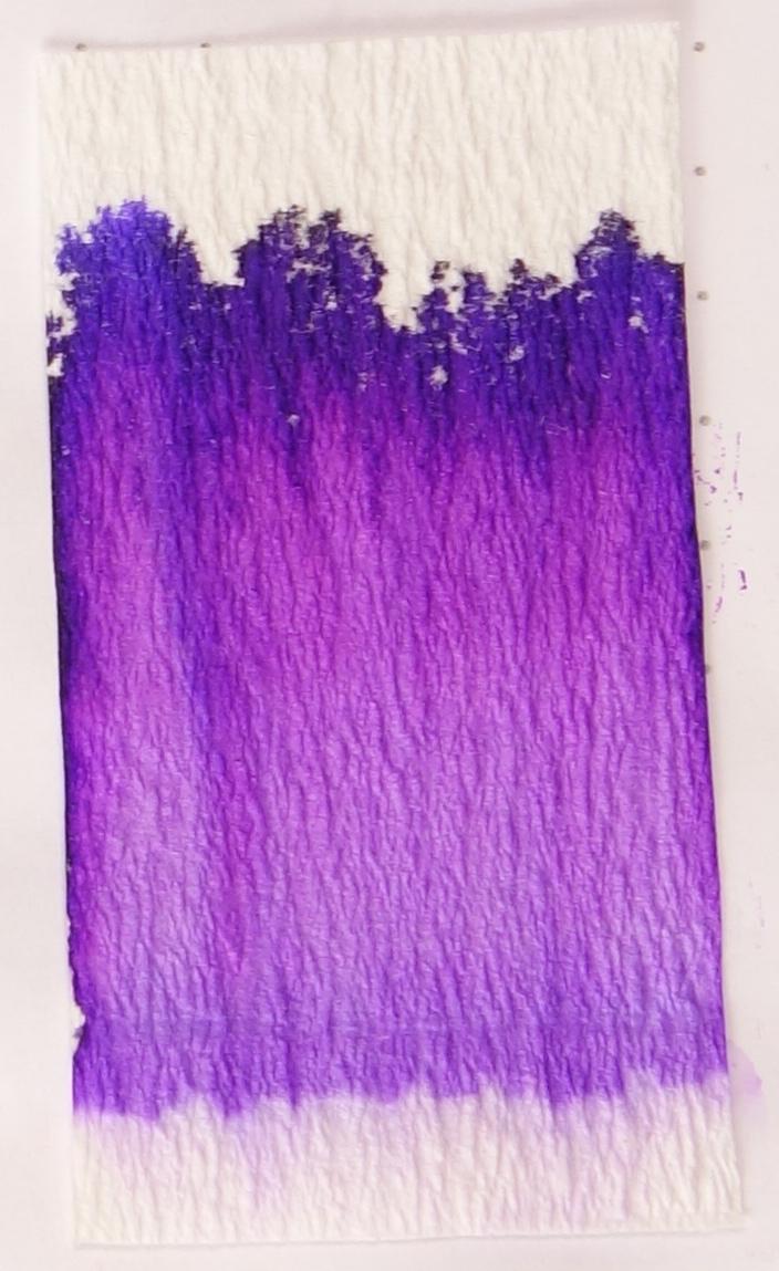 Akkerman #13 Simplisties Violet