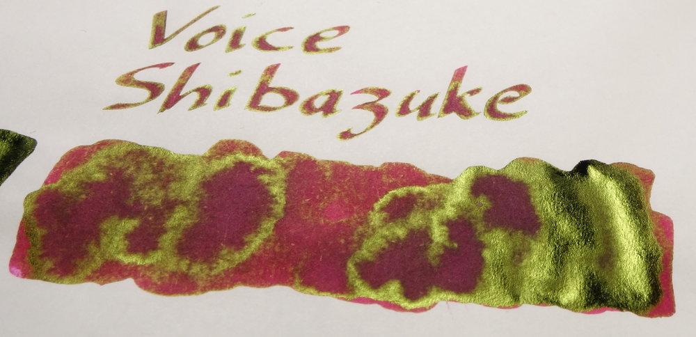 Sheen Voice Shibazuke.JPG