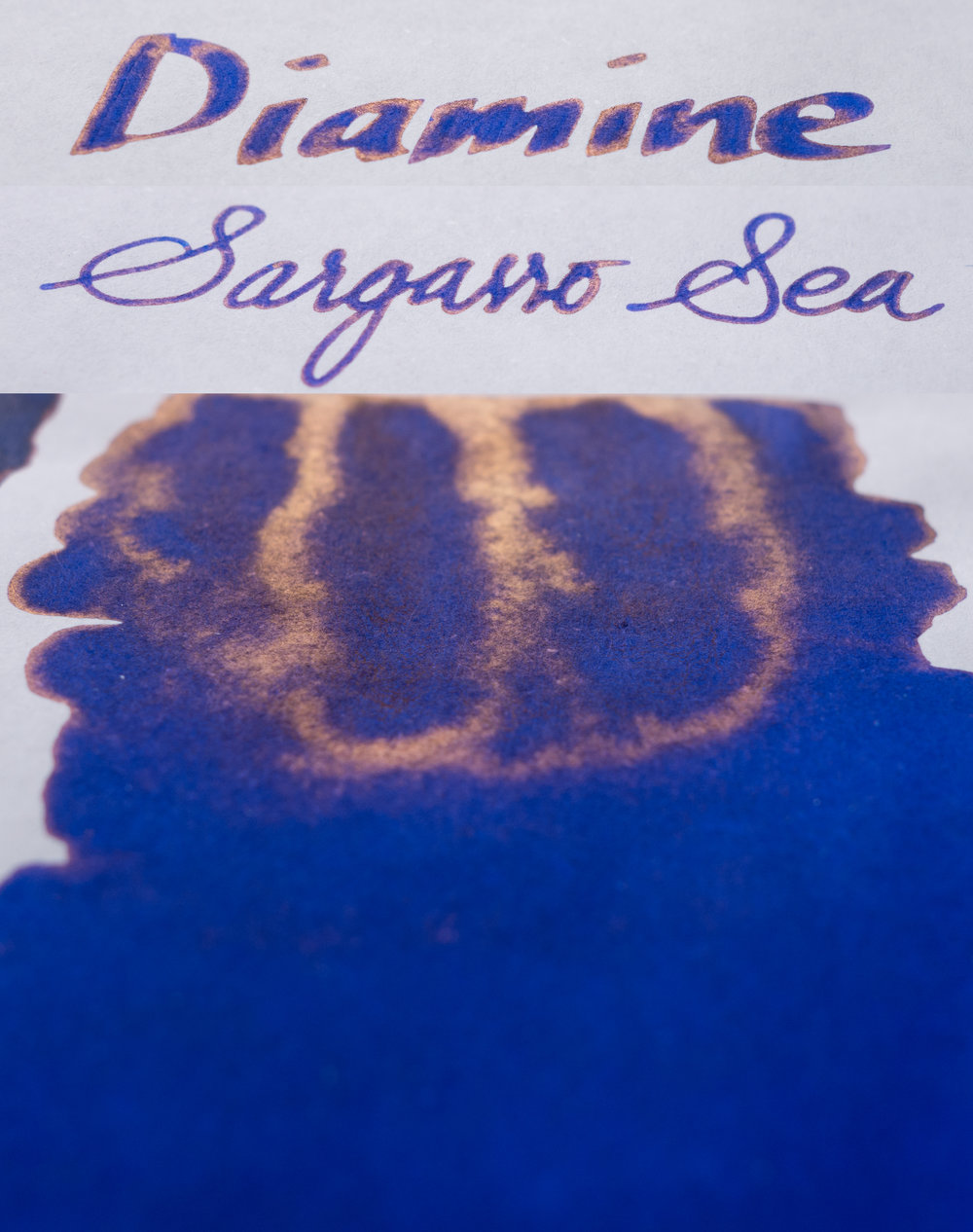 Diamine Sargasso Sea Sheen Card.jpg