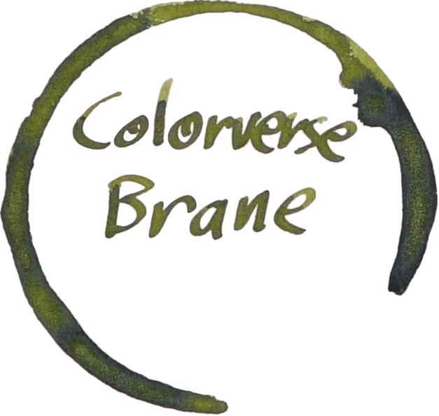Brane Logo 1.png